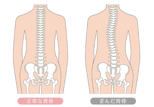 骨盤・筋膜はカラダの土台
